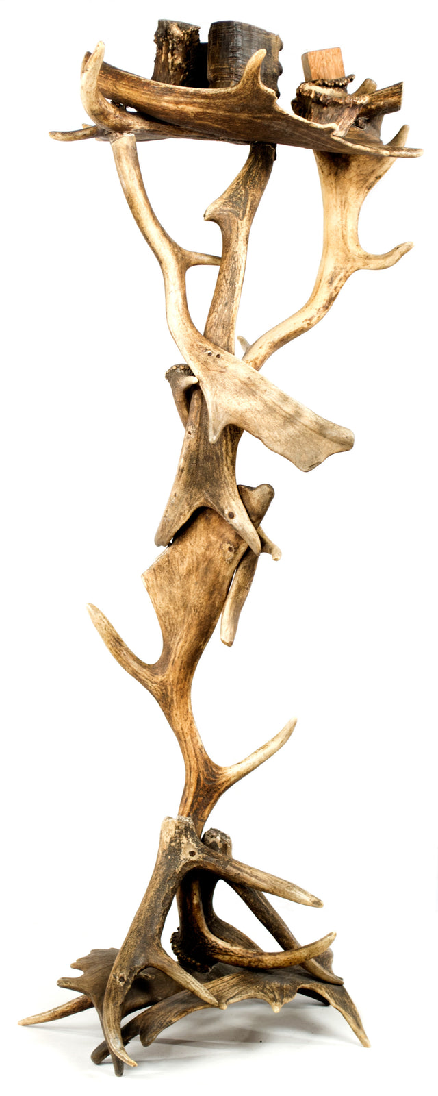 Cigar Caddy Made of Fallow Deer Antlers