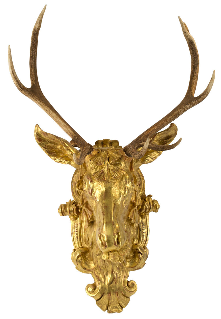 Red Deer Antlers Mounted on Gilt Stag Head