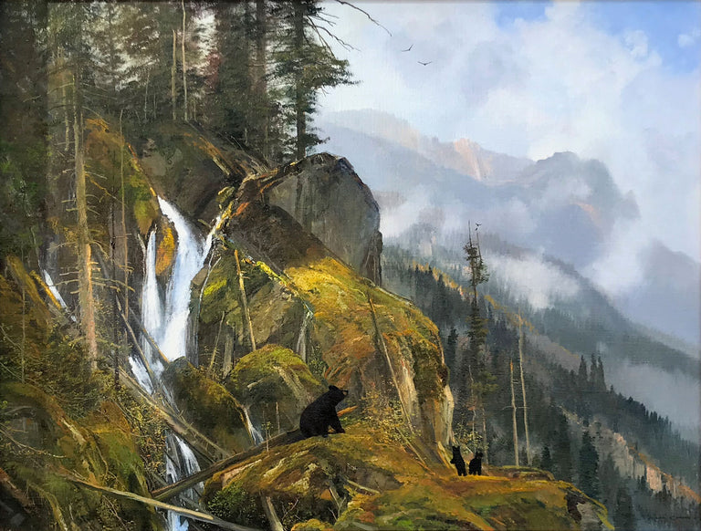 Black Bears in the Wilderness by Michael Coleman