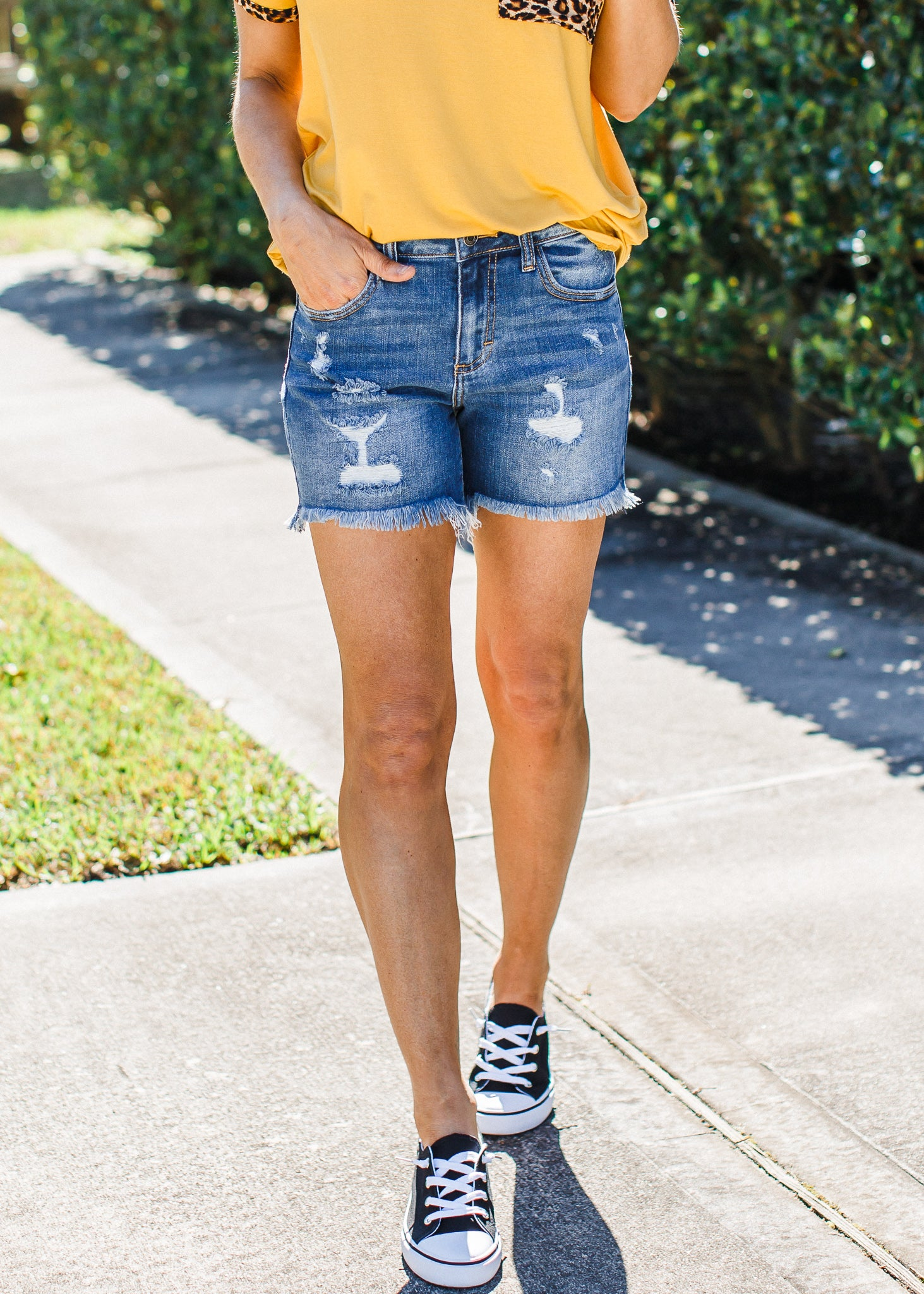 Kimberly Shorts ( S-3X )