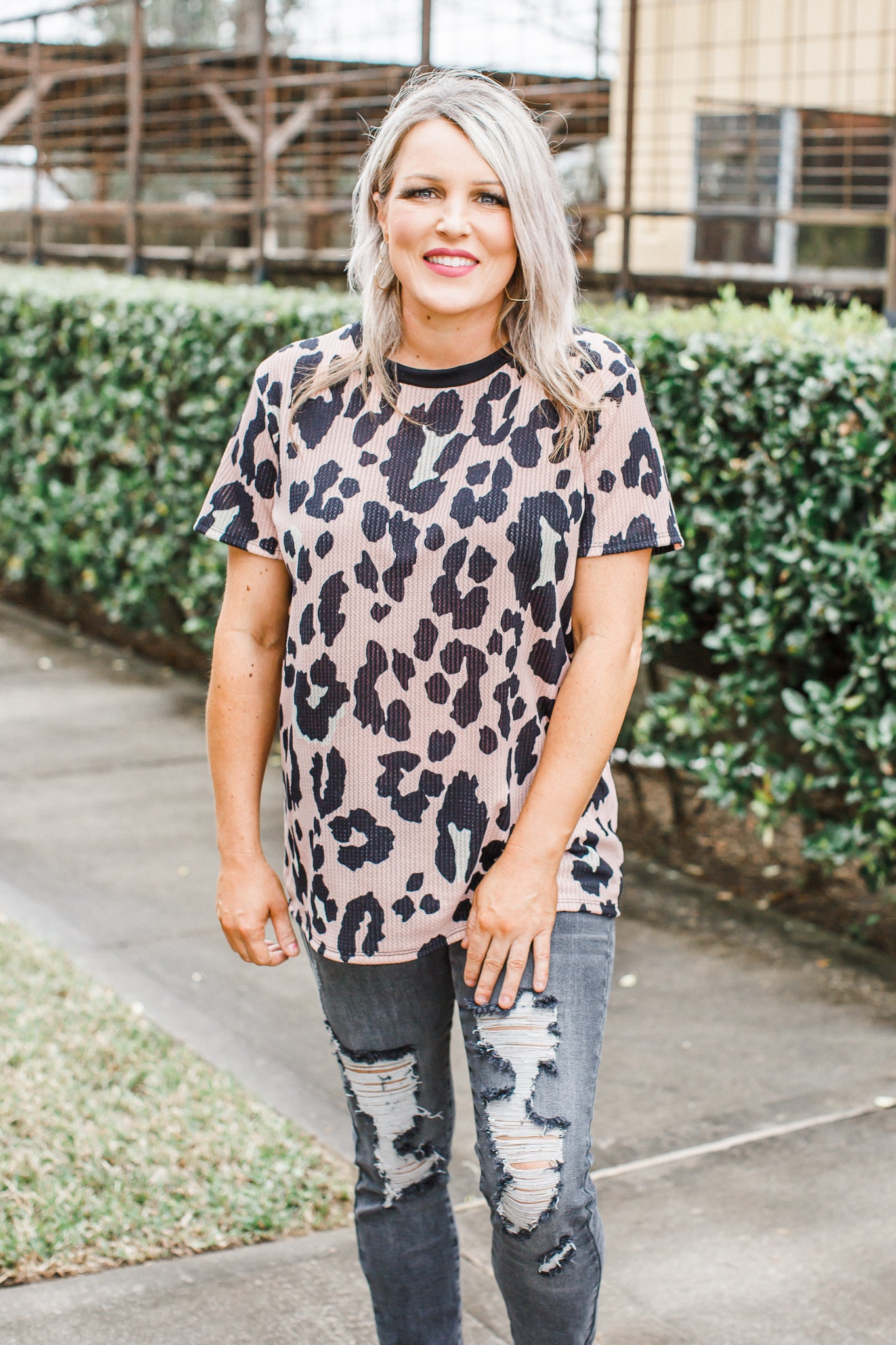 Colored Leopard Top *MAUVE