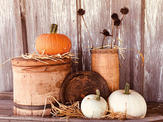 Anthony Smith ANT150 - ANT150 - Autumn Pumpkins - 16x12 Photography, Autumn, Pumpkin, White Pumpkin, Still Life, Hay from Penny Lane