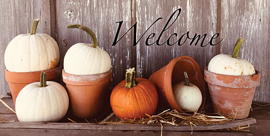 Anthony Smith ANT151 - ANT151 - Welcome Pumpkin Shelf - 18x9 Signs, Typography, Welcome, Fall, Clay Pots, Pumpkins, Hay from Penny Lane