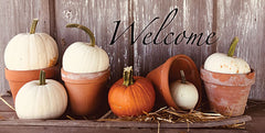 ANT151 - Welcome Pumpkin Shelf - 18x9