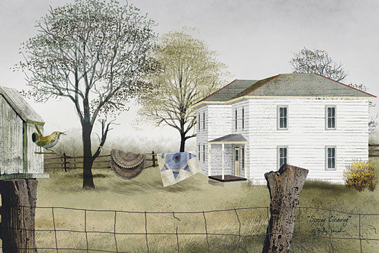 Billy Jacobs BJ107 - Spring Cleaning - Spring, Quilt, Clothesline, House, Fence, Birds, Rugs from Penny Lane Publishing