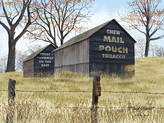 Billy Jacobs BJ1099 - Treat Yourself - Barn, Advertising, Mail Pouch, Tobacco from Penny Lane Publishing