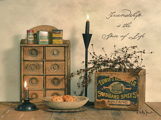 Billy Jacobs BJ1108 - Friendship is the Spice of Life - Spices, Candle, Friendship, Spice Rack from Penny Lane Publishing