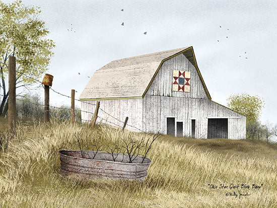Billy Jacobs BJ455 - Ohio Star Quilt Block Barn - Ohio Star, Quilt, Barn, Bucket, Farm from Penny Lane Publishing