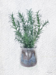BLUE516 - Rosemary Jar - 12x16