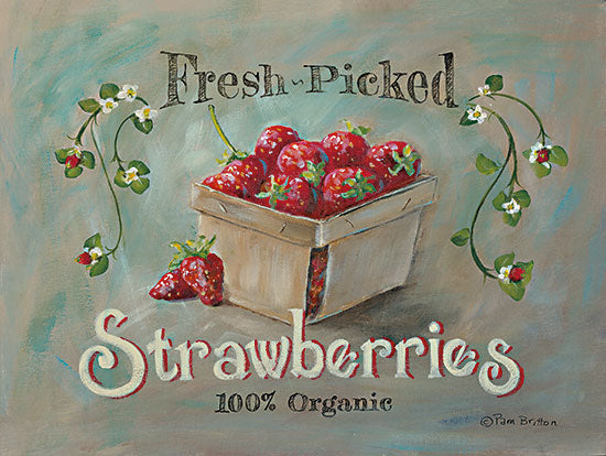 Sara Baker BR505 - BR505 - Fresh Picked Goodness - 16x12 Fresh Picked, Strawberries, Fruit, Kitchen, Carton of Strawberries from Penny Lane