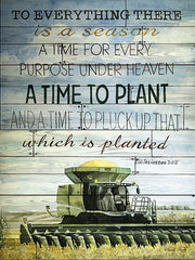 CIN111 - A Time to Plant - 12x16