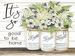 CIN1824 - It's So Good to be Home Ball Jars - 16x12