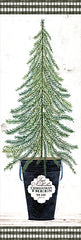 CIN1907A - Fir Tree    - 12x36