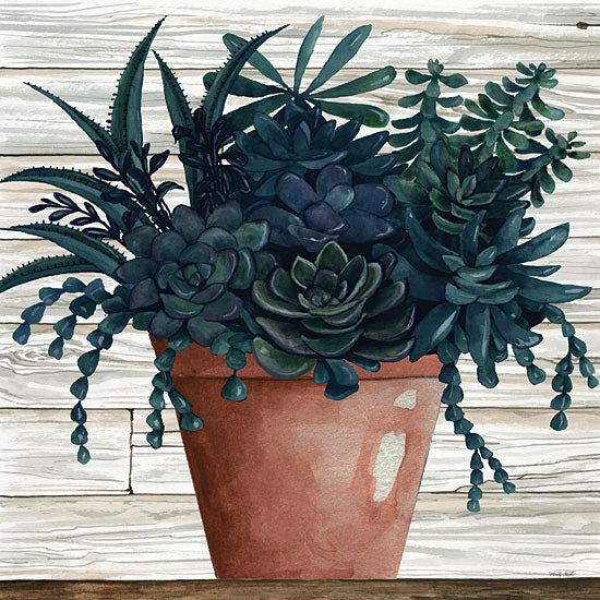 Cindy Jacobs CIN1952 - CIN1952 - Remarkable Succulents III - 12x12 Clay Pot, Succulents, Wood Planks from Penny Lane