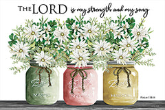 CIN2024 - The Lord is My Strength and My Song - 18x12