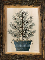 CIN2449 - Woodland Potted Tree I - 12x16