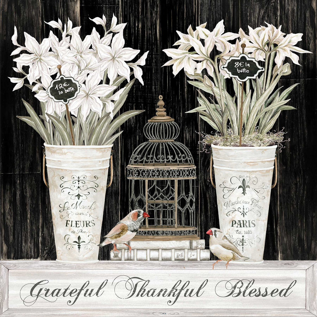Cindy Jacobs CIN2685 - CIN2685 - Grateful Thankful Blessed Still Life - 12x12 Grateful, Thankful, Blessed, Still Life, Flowers, Bouquets, Birdcage, Birds, Signs from Penny Lane