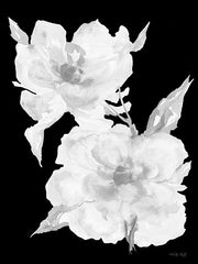 CIN2795 - Black & White Flowers II - 12x16
