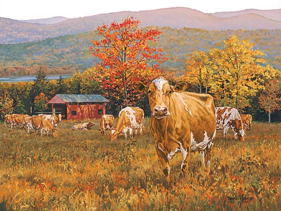 Bonnie Mohr COW134 - Autumn's Gold - Cows, Pasture, Trees, Autumn, Field from Penny Lane Publishing