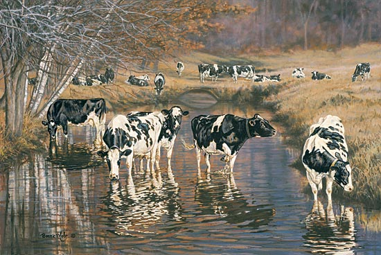 Bonnie Mohr COW145 - Fall Reflections - Cows, Creek, Field, Grazing from Penny Lane Publishing