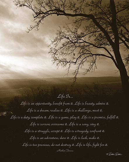 Dee Dee DD523 - Life Is...  - Trees, Sepia, Inspirational, Mother Teresa from Penny Lane Publishing