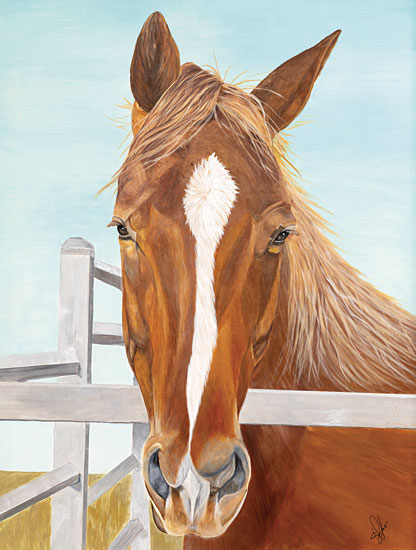 Diane Fifer DF152 - DF152 - Greg - 12x16 Horse, Fence, Farm Animal from Penny Lane