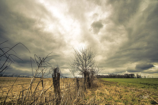 Donnie Quillen DQ103 - Storm Season II - Storm, Field, Landscape, Fence from Penny Lane Publishing