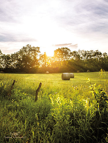 Donnie Quillen DQ125 - Daybreak in the Country I - Country, Field, Sun from Penny Lane Publishing