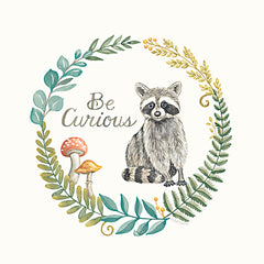 DS1959 - Be Curious Raccoon - 12x12