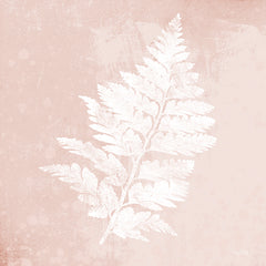 FEN150 - Blush Fern II - 12x12