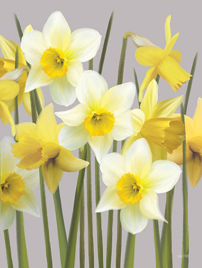 House Fenway FEN323 - FEN323 - Spring Daffodils - 12x16 Flowers, Blooms, Spring, Daffodils, Botanical from Penny Lane