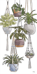 HK140 - Indoor Hanging Plants   - 9x18