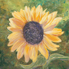 JAN235 - Sunflower