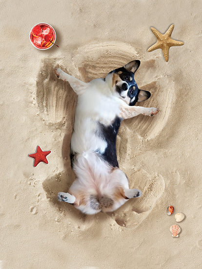 JG Studios JGS454 - JGS454 - Sand Angel Dog - 12x16 Dog, Beach, Sand Angles, Whimsical, Fantasy, Shells, Coastal, Humorous from Penny Lane