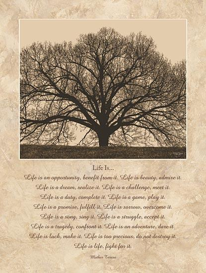 John Jones JJ463 - Life Is...  - Tree, Sepia, Inspirational, Mother Teresa from Penny Lane Publishing