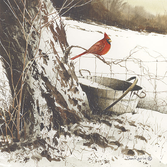 John Rossini JR138 - Country Cardinal - Snow, Winter, Cardinal, Bucket, Tree from Penny Lane Publishing
