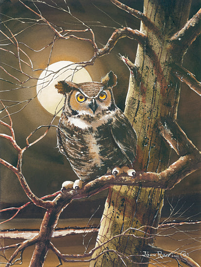 John Rossini JR364 - JR364 - The Night Owl - 12x16 Owl, Night Owl, Trees, Moon, Nature from Penny Lane