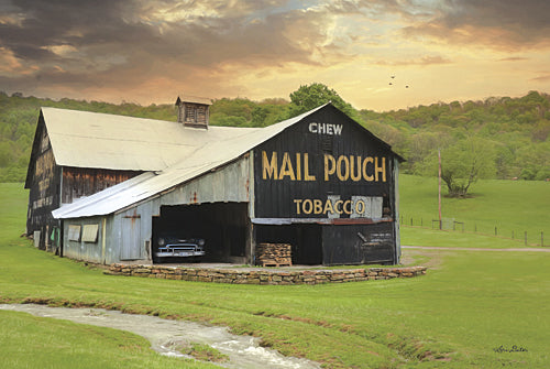 Lori Deiter LD1015 - Mail Pouch Barn - Barn, Tobacco, Landscape from Penny Lane Publishing