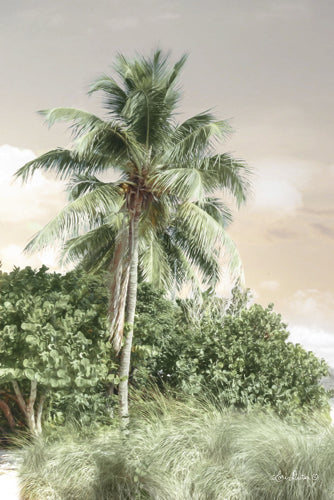 Lori Deiter LD1039 - Sanibel Island Palm - Palm Trees, Landscape, Tropical from Penny Lane Publishing
