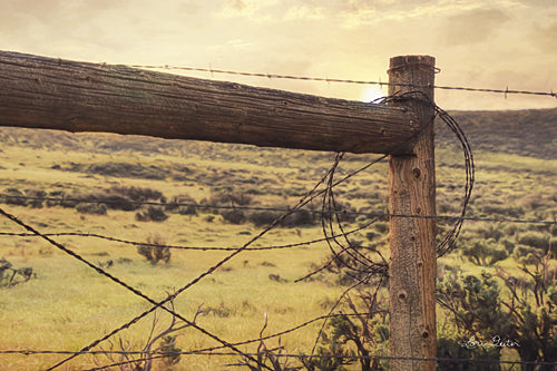Lori Deiter LD1044 - Barbed Wire Fence - Fence, Landscape from Penny Lane Publishing