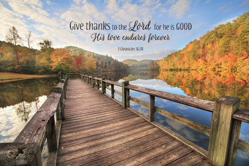 Lori Deiter LD1047 - Give Thanks to the Lord - Path, Trees, Inspirational, Religious from Penny Lane Publishing