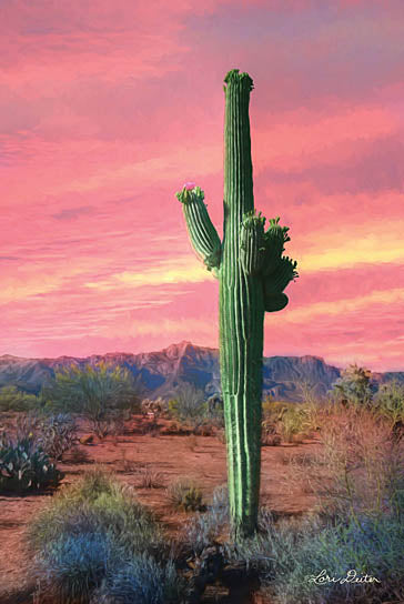 Lori Deiter LD1082 - Vibrant Cactus Sunset  - Cactus, Dessert from Penny Lane Publishing