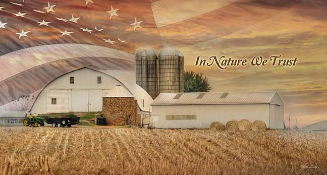 Lori Deiter LD1115 - In Nature We Trust - Farm, American Flag, Barn, Field, Nature, Inspiring from Penny Lane Publishing