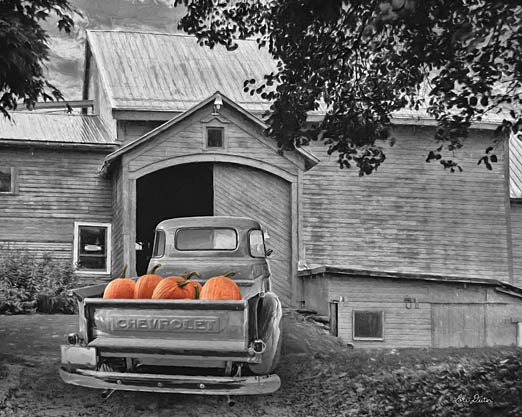 Lori Deiter LD1119 - Pumpkin Truck - Pumpkins, Truck, Black & White, Barn, Farm, Autumn, Harvest from Penny Lane Publishing