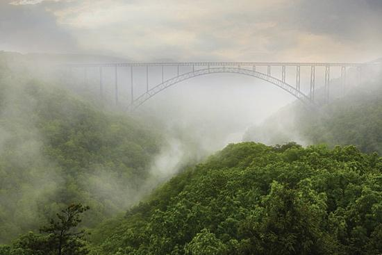 Lori Deiter LD1125 - New River Gorge Bridge - Fog, Bridge, Trees, Landscape from Penny Lane Publishing
