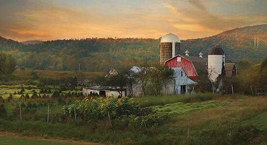 Lori Deiter LD1130 - New York Country Sunset - Farm, Barn, Sunflowers, Hillside, Landscape from Penny Lane Publishing