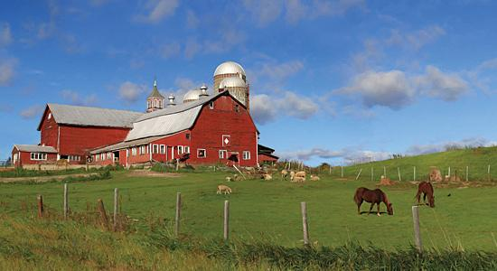 Lori Deiter LD1131 - A Perfect Day - Farm, Barn, Horses, Landscape from Penny Lane Publishing
