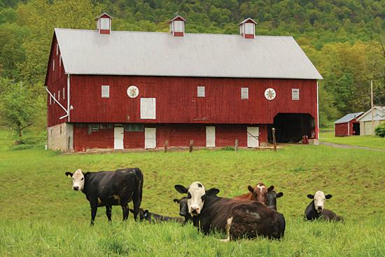 Lori Deiter LD1139 - Red Barn - Barn, Cows, Field, Farm, Landscape from Penny Lane Publishing