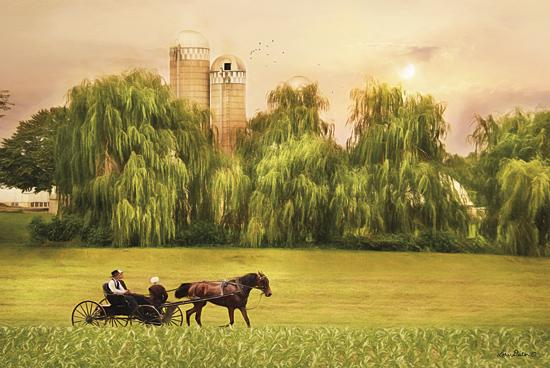Lori Deiter LD1142 - Amish Buggy Ride - Amish, Buggy, Trees, Field, Weeping Willows from Penny Lane Publishing