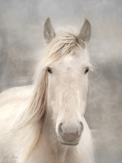 Lori Deiter LD1797 - LD1797 - White Beauty I - 12x16 Portrait, Photography, Horse from Penny Lane